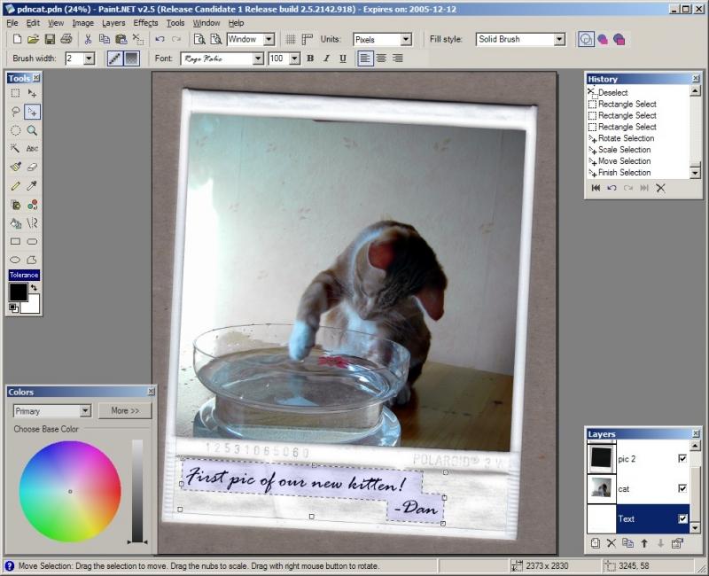 Paint Net 4 2 12