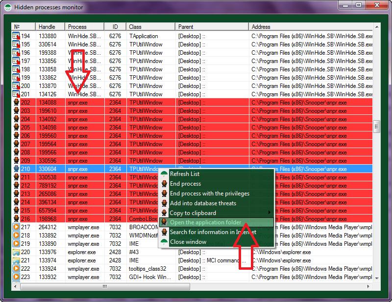 Hidden processes monitor