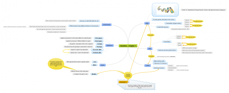 Genetic Notes Mind Map