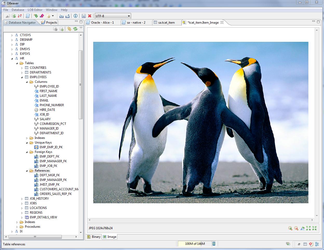 DBeaver 6 1 1   Database Software   FileEagle com