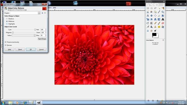photoshop cc importer pdf petit